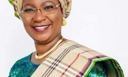 Professor Ibiyemi Olatunji Bello Biography Wiki Profile Net Worth