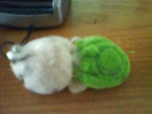 ChambyT's tortoise