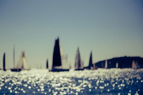 Sail boat race: Hot Rum Regatta on 21 November 2015