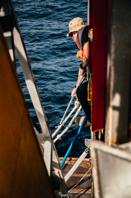 Randy, a crew member, sliced a strongly tensioned mooring line like a knife through butter. This was one of three mooring lines that anchored FLIP on station.