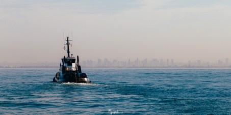 Tow boat heading toward San Diego
