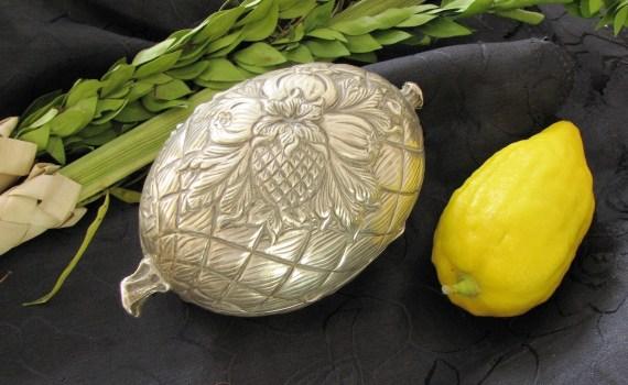 Etrog and Lulav
