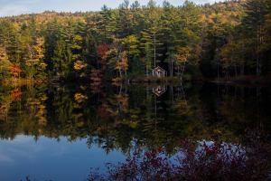 Fall in the Lake