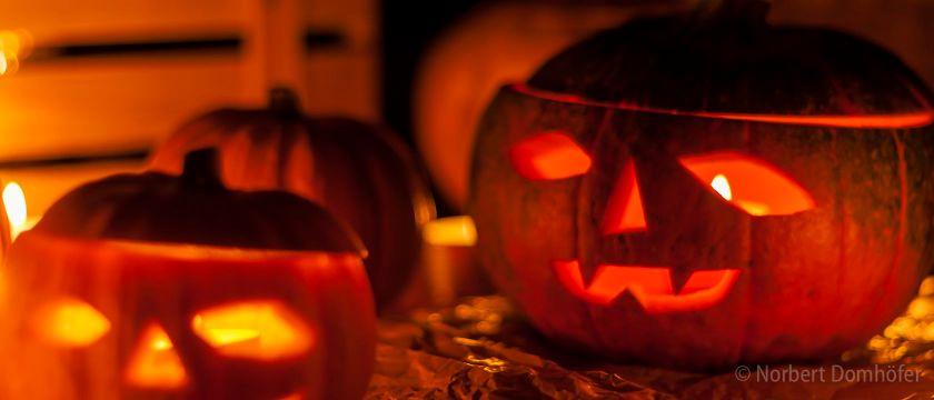 Halloween - © Norbert Domhoefer / nhd-photo.de