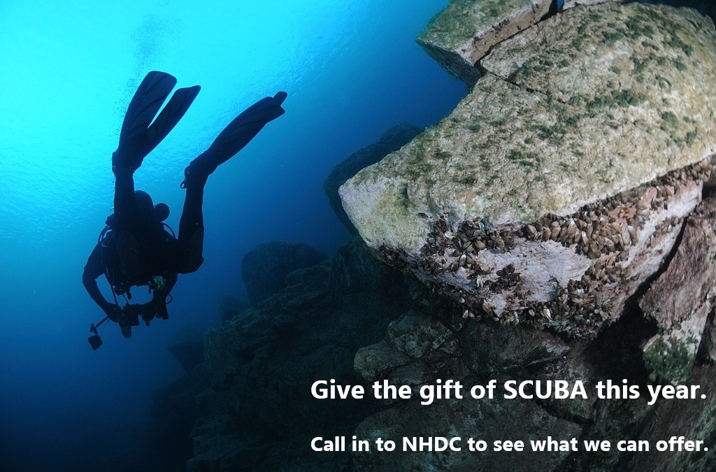 Give the gift of SCUBA this year with NHDC