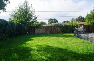 Grassed area on the south end of the back yard of 535 Oriole
