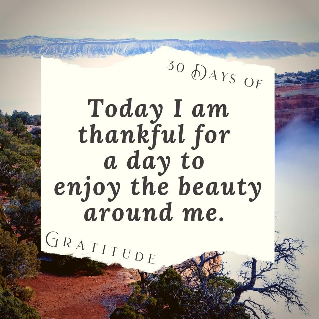 While many are jostling for a great deal in the stores today, others are taking the time to #getoutside and enjoy nature. ⁣ ⁣ Whatever you are choosing to do today, I hope that your day is fantastic!⁣ ⁣ ⁣ #30daysofgratitude #thankful #blessed #grateful #gratitudechallenge #gratitude #thanksgiving