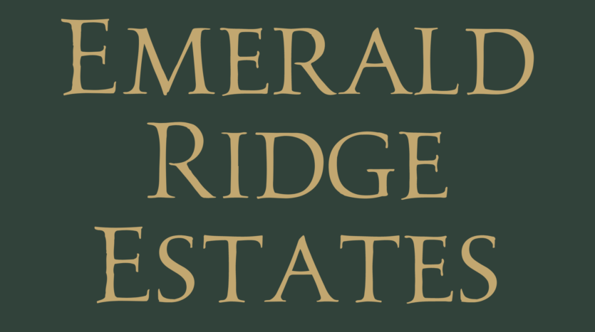 Emerald Ridge Estates is a new housing development in north Grand Junction, CO, offering 3-5 bedroom custom and semi-custom homes on comfortable lots.
