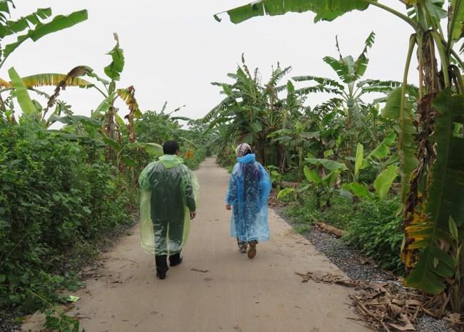 Con đường làng dẫn đến làng nổi.