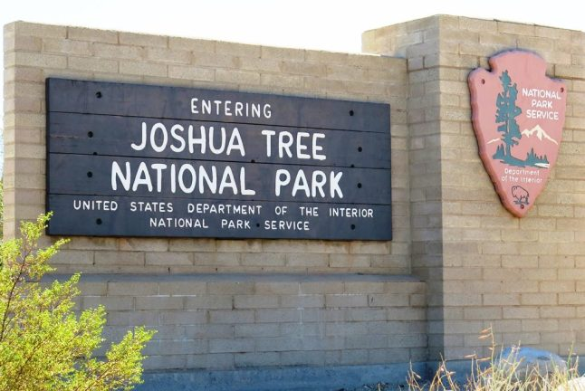 mai-2016-calif-joshua-tree-1a-p