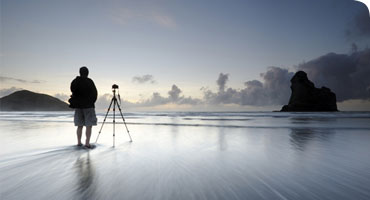 Behind the Lens: Wildlife Photographers