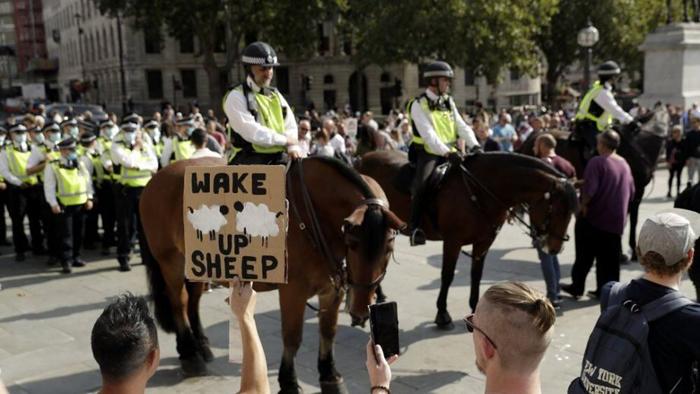 Anti-lockdown protests demand cities reconsider resuming coronavirus restrictions