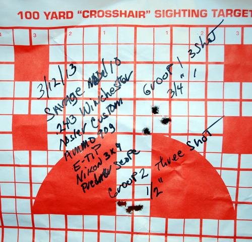 Savage Model 10 100 yd target