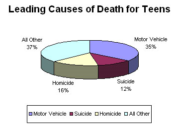 Pie Chart - Leading cause of death among teens.
