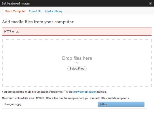 error image pada wordpress