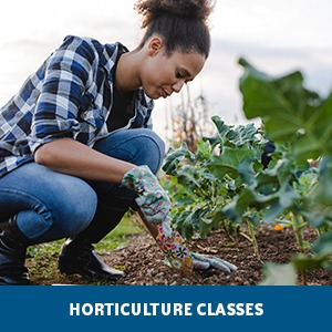 Horticulture Classes