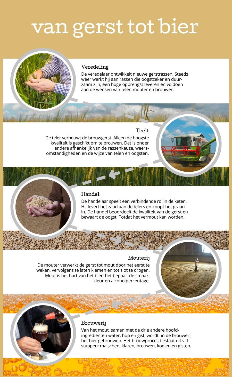 nederlands-bier-infographic