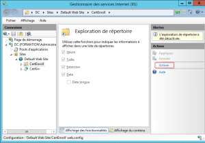 Manage Workgroup Workstation Configure IIS