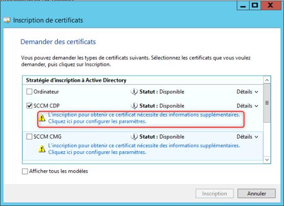 hoose template certificate