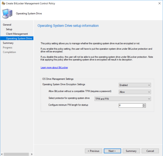 Configure OS drive information