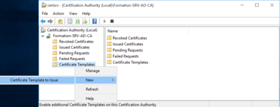Add certificate on Certificate Template on Issue