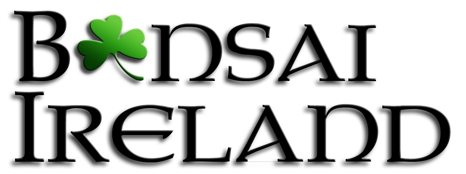 Bonsai_Ireland_3