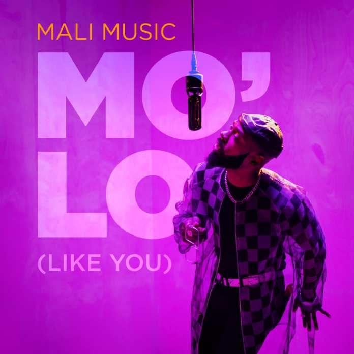 Mali Music Mo'Lo (Like You)