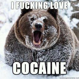 i love cocaine grizzley