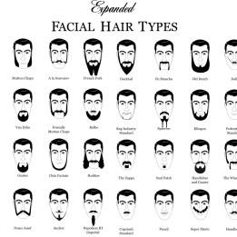 informational info life hacks facial hair types (17)