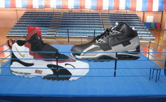 Sneaker Showdown  Nike Air Max Speed Turf