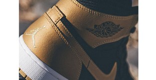 Carmelo Anthony Air Jordan 1
