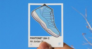 Air Jordan 11 Pantone sticker by Larry Luk