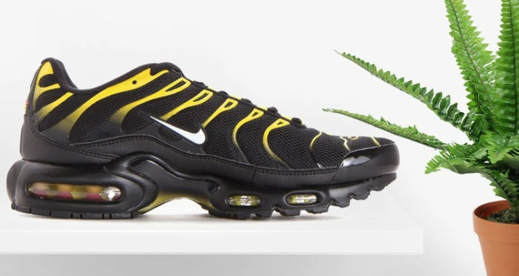 https://i2.wp.com/www.nicekicks.com/files/2018/01/nike-air-max-plus.jpg?fit=750%2C400