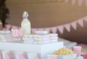 Nice Party: Un cumpleaños de princesas de cuento