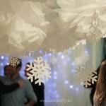 Una fiesta inspiración Frozen para mayores