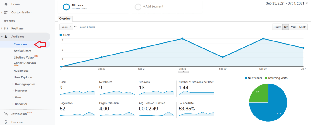 Google analytics screenshot of audience overview section.