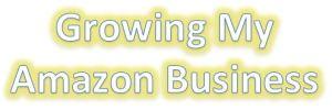 Growing Amazon FBA Business