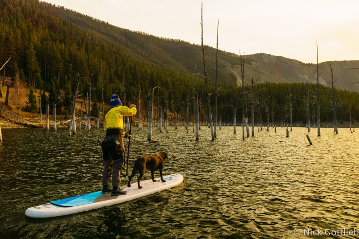 Because the lake is new (1959), it's filled with dead trees that make for a eery natural slalom course.