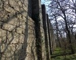 Ruine Deutsch Wagram
