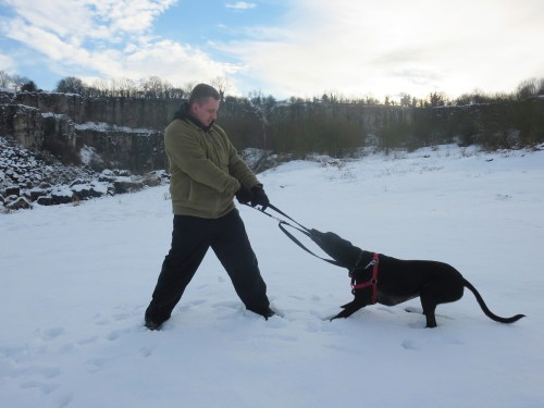Hall Dale Quarry near Matlock in Derbyshire. Even dog was getting fed up of the cold.