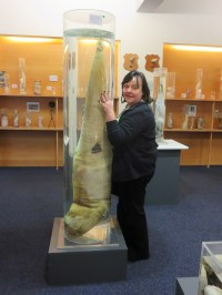 Sam with her hands on a large specimen