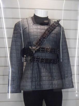 Romulan costume