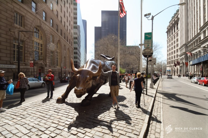 Wall Street Bull - New York City
