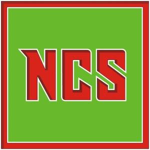 Nickel-Chrome-Solution - Logo