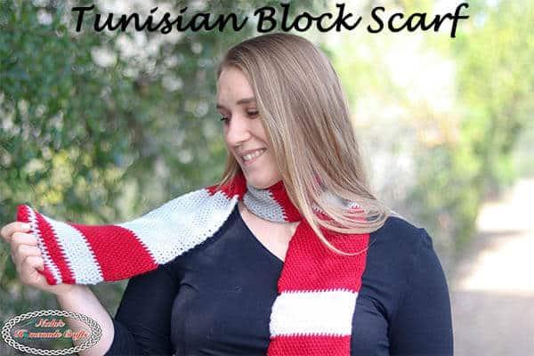 Tunisian Block Scarf Crocheted free pattern