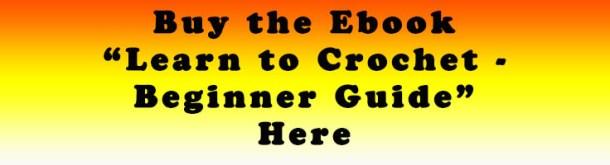 Learn to Crochet Beginner Guide Ebook