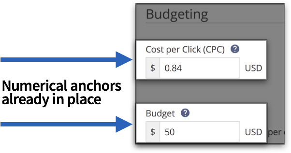 anchoring-effect-in-placeholder-text