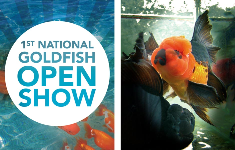 National Goldfish Show Poster