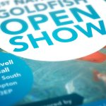Open Show for Exotic Goldfish