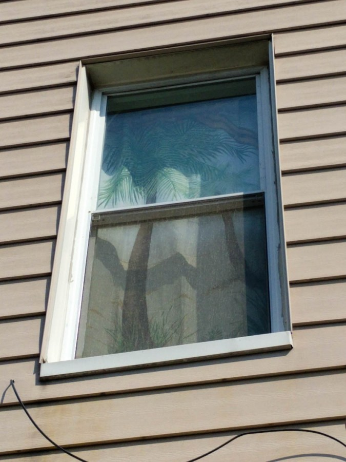 got some new blinds for the Summer